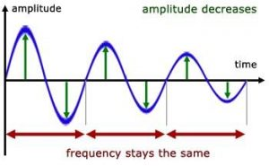 amplitude decreases as a result of damping